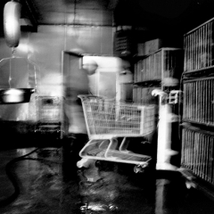 Cart and Cage,  Gelatin Silver Print